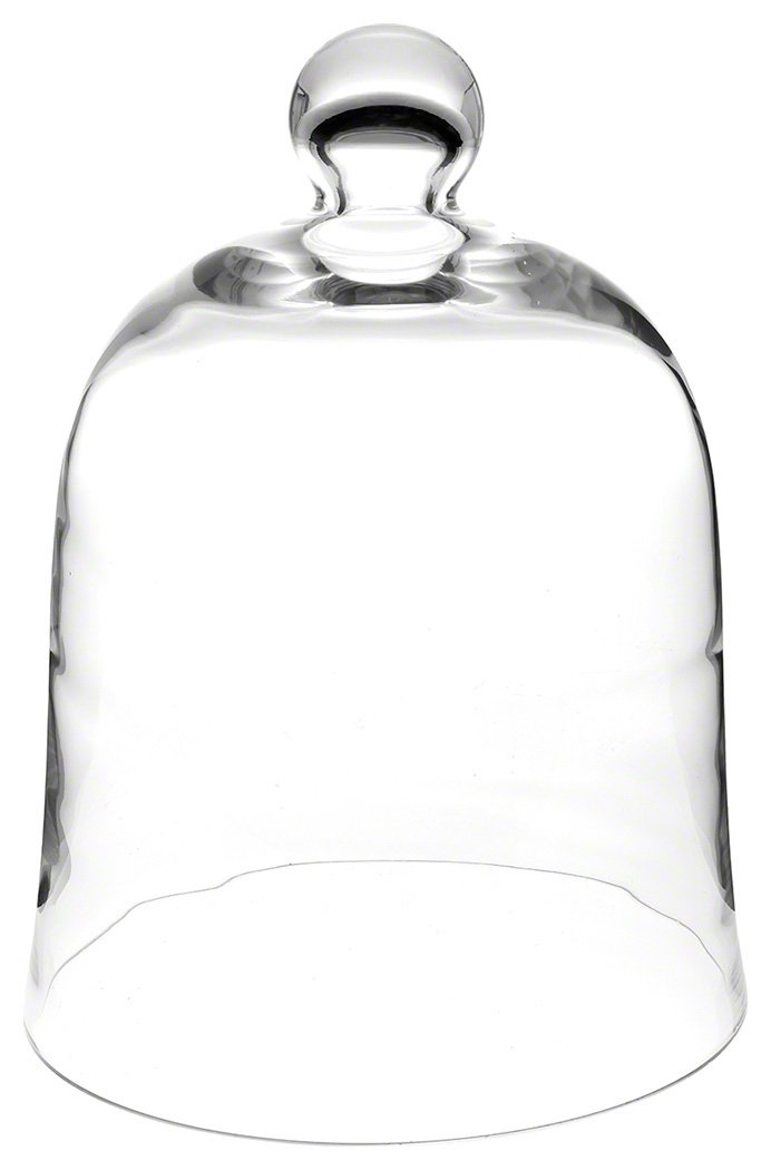 "Plymor Brand 10"" x 13"" Bell Jar Glass Display Dome Cloche (Interior Size 9.5"" x 10.5"")"