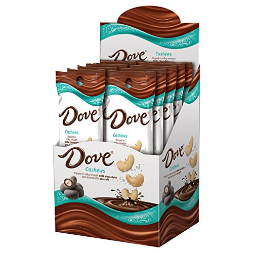 DOVE Cashews With Sea Salt and Milk Chocolate Candy 1.6-Ounce Pouch (10 Count) ()