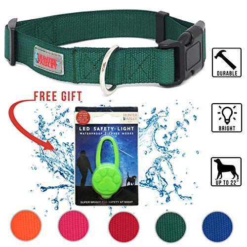Hunter Paisley Pets Nylon Dog Collar Snap N Go with Detachable LED Collar Light (M, Forest Green)
