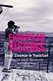 European Visions: Small Cinemas in Transition (Film Studies)