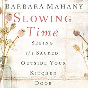 Slowing Time Audiobook