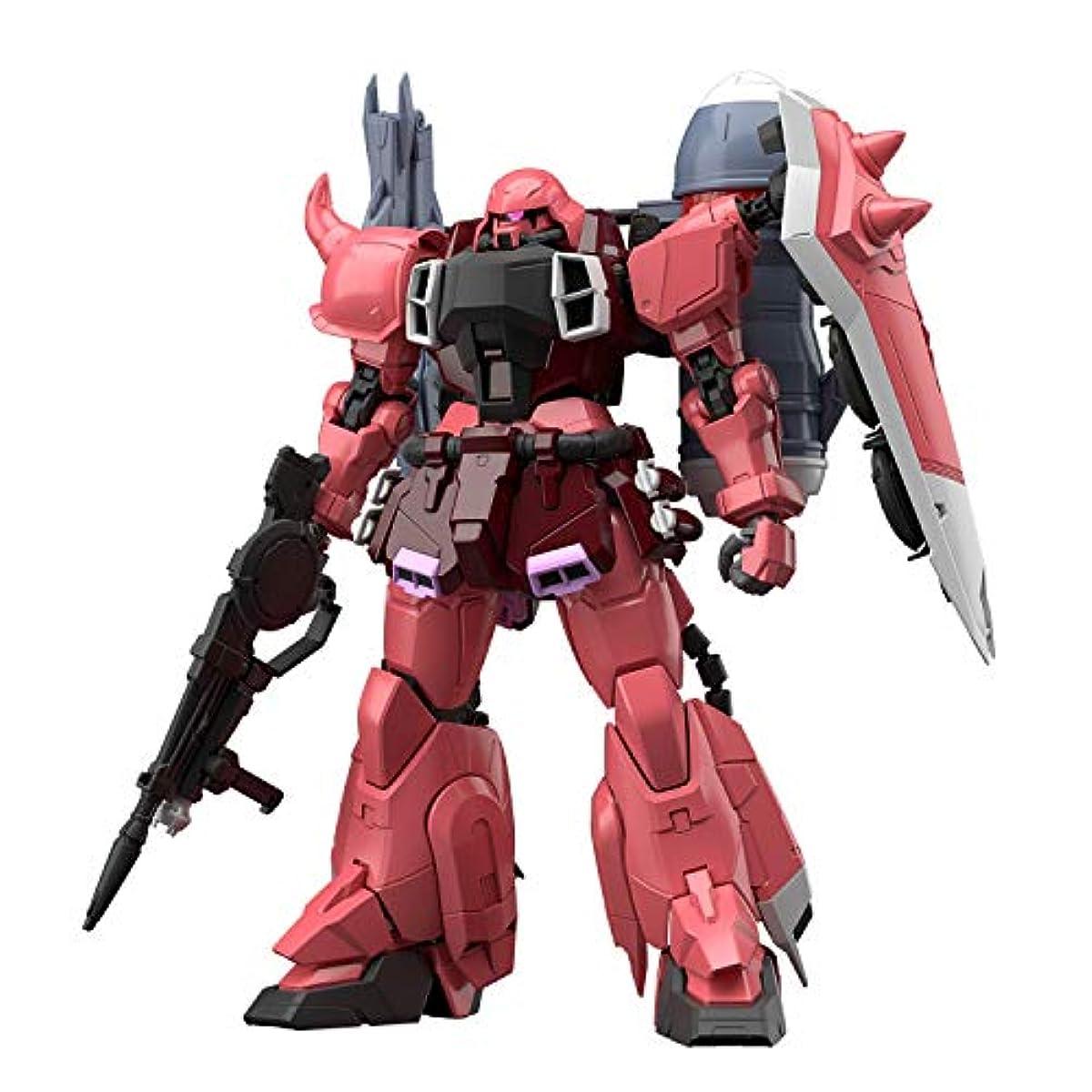 [해외] MG 기동 전사 건담SEED DESTINY 가나자쿠 워리어루나마리아호크 전용기 1/100스케일 색별 분류필 프라모델