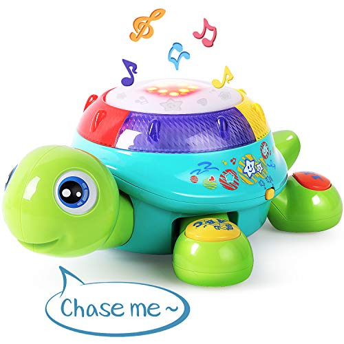 Musical Turtle Toy English