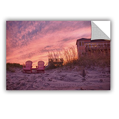 Artwall Dan Wilsons Outer Banks Pink Art Appeelz Removable Graphic Wall Art  16 By 24 Inch