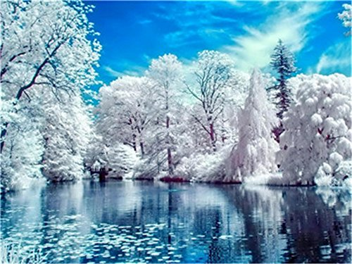 - Diy Oil Paint by Number Kit for Adults Beginner 16x20 inch - Lake Snow Pattern, Drawing with Brushes Christmas Decor Decorations Gifts (Without Frame)