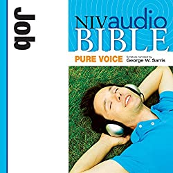 NIV Audio Bible, Pure Voice: Job
