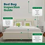 Eco Defense Bed Bug Killer, Natural Organic Formula