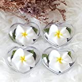 White Plumeria Flower Set of 4 Hand Carved Decorative Soaps with Jasmine Aroma Essential Oil, Handmade Flower Soap Carving by Thai Artisan
