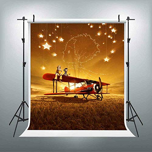 LUCKSTY Vintage Plane Shiny Stars Backdrops for Photography 6x9FT Gold Sunshine Little Prince Photo Backgrounds Movie Poster Theme Party Wall Paper Room Mural LUGE045 from LUCKSTY