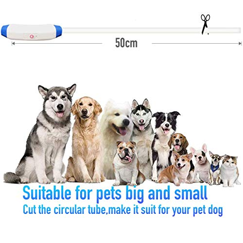 Microwear LED Hundehalsband+1 Sicherheits Clip-On LED Blinklicht,LED Leuchthalsband Hund Halsband USB wiederaufladbar,Längenverstellbarer Sicherheit Kragen für Haustier,3 Modus