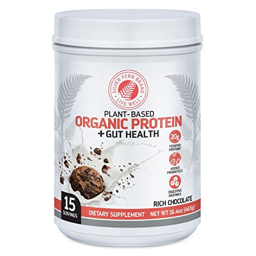 Silver Fern Brand Organic Vegan/Vegetarian Protein Powder Drink Mix - 1 Tub - 15 Servings - Rich Chocolate - Plant Based - Includes Probiotics & Digestive Enzymes - Max Protein Absorption