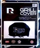 Tampa Bay Rays Economy Grill Cover