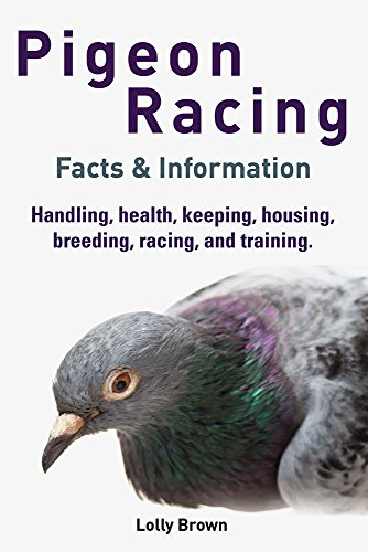 Pigeon Racing: Handling, health, keeping, housing, breeding, racing, and training. Facts & Information by [Brown, Lolly]