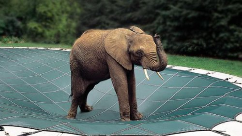 18 x 36 Rectangle Loop-Loc Safety Pool Cover by Loop-Loc