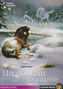 Cheval fantôme, Tome 5 : Un poulain dans la tourmente par Farley