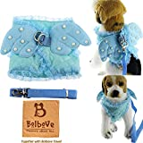 i'Pet Adorable Comfort Cat & Dog & Kitty & Puppy Safety Walking Vest Harness + Matching Lead Leash Angel Wings Costume Lace Peals Design (X-Small, Blue)