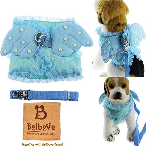 i'Pet Adorable Comfort Cat & Dog & Kitty & Puppy Safety Walking Vest Harness + Matching Lead Leash Angel Wings Costume Lace Peals Design (X-Small, (Adorable Dog Costumes)