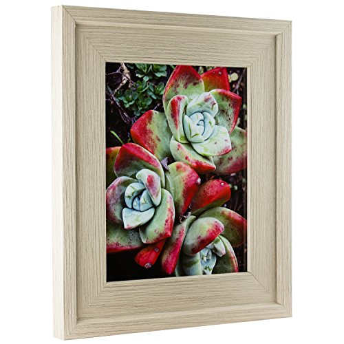 Craig Frames Light Brown Faux Oak Picture Frame, 8 by 10-Inch (Frame Oak Moulding Picture)