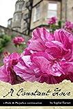 A Constant Love: A Pride & Prejudice Continuation (Volume 1)