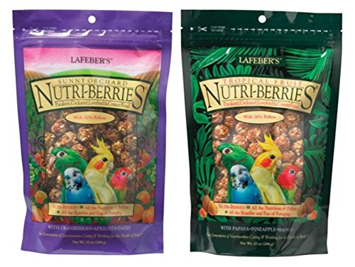 (Lafeber's Nutri-Berries Parakeet, Cockatiel, Lovebird & Conure Food 2 Flavor Variety Bundle: (1) Papaya/Pineapple/Mango, and (1) Cranberries/Apricots/Dates, 10 Oz. Ea. (2 Bags))