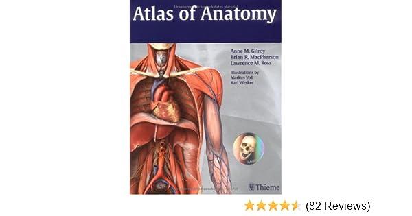 Atlas Of Anatomy Thieme Anatomy 9781604060621 Medicine Health