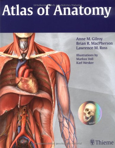 Atlas of Anatomy (Thieme Anatomy) by Brand: Thieme