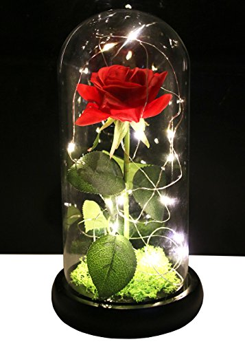 Langxun Red Silk Rose and LED Light that Lasts Forever in Glass Dome Inspired and the Wooden Black Base Covered with Real Moss for Home Decor Wedding Decorations and Gifts for Women