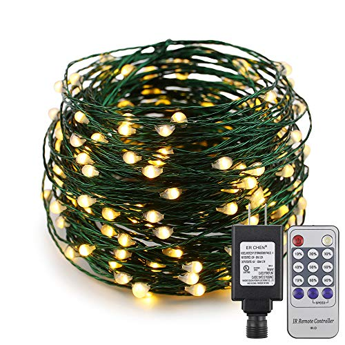 ER CHEN 66ft Led String Lights,200 Led Starry Lights on 20M Green Copper Wire String Lights Power Adapter + Remote Control(Warm White) ()