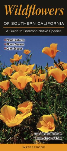 Wildflowers Of Southern California: A Guide To Common Native Species (Quick Reference Guides)