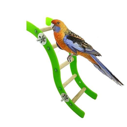 Uteruik - Escalera de Juguete para pájaros para Loros, periquitos ...