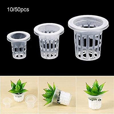 Tooeary 10/50pcs Durable Soilless Hydroponic Planting Cultivation Nursery Sponge Seed Trays Flower Pots Planting Basket(50pcs Nursery Sponge): Home & Kitchen
