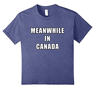 Meanwhile in Canada - Funny Meme T-Shirt