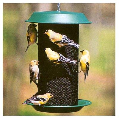 Woodlink NAMAG2 Plastic Magnum Nyjer Thistle Magnum Bird Feeder, Hunter Green ()