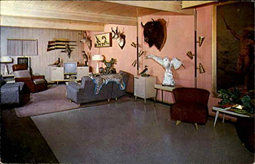 The Plainsman Motel Grand Forks, North Dakota ND Original Vintage Postcard