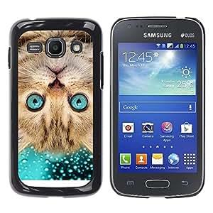 YiPhone /// Prima de resorte delgada de la cubierta del caso de Shell Armor - American Shorthair Surprised Cat Blue - Samsung Galaxy Ace 3 GT-S7270 GT-S7275 GT-S7272