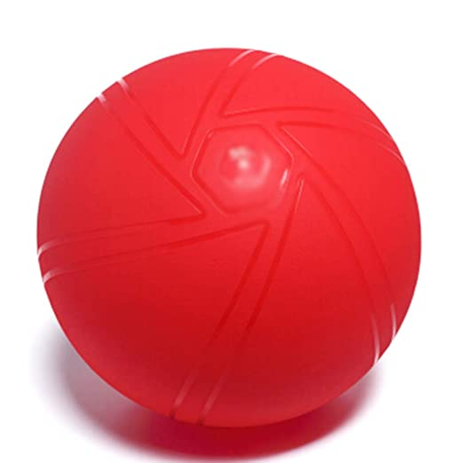 THOR-YAN Bola de Ejercicio - Bola de Yoga Súper Gruesa ...