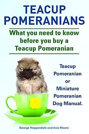 pomeranian tea cups for sale