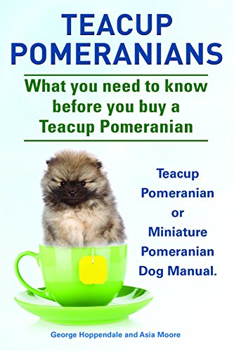 Teacup Pomeranians  Teacup Pomeranian or Miniature Pomeranian Dog Manual   What you need to know before you buy a teacup Pomeranian