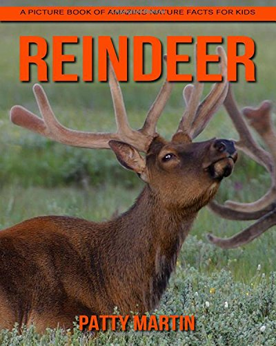 Download Reindeer: A Picture Book of Amazing Nature Facts for Kids pdf epub