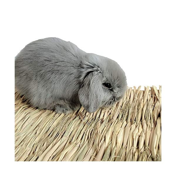 Grass Mat Woven Bed Mat for Small Animal Bunny Bedding Nest Chew Toy Bed Play Toy for Guinea Pig Parrot Rabbit Bunny Hamster Rat(Pack of 3) (3 Grass mats) 3
