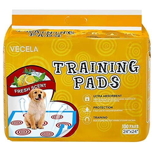 VECELA Pet Training Pads with Guided Circle Printing Regular Heavy Duty 24 x 24-100Count