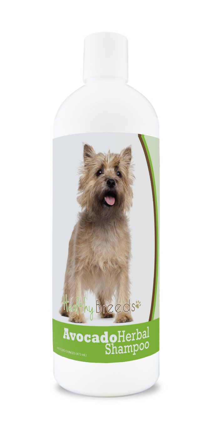 Healthy Breeds Herbal Avocado Dog Shampoo for Dry Itchy Skin for Cairn Terrier Over 200 Breeds for Dogs with Allergies or Sensitive Skin 16 oz