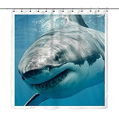 Great White Shark - Shower Curtain, 70 x 70 Inches