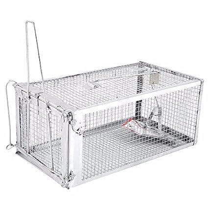Amazon.com: Trampa para ratas: Jaula humanitaria para ...