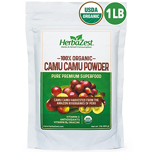 All Organic Camu Camu Powder | 16 ounce / 1 Full Pound | USDA Certified | From the Amazon Riverbanks | NUTRIENT-RICH and Best Source of Vitamin C | - Powder Camu