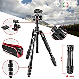 Manfrotto MKBFRTA4BK-BH Befree Advanced Travel Tripod, Twist Lock with Ball Head for Canon, Nikon, Sony, DSLR, CSC, Mirrorless, Up to 8 kg with Tripod Bag, Lightweight Aluminium, Black
