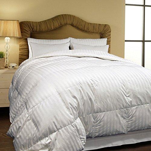 Hotel Grand Oversized 500 Thread Count All-season Siberian White Down Comforter- Twin.