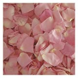 Bridal Pink Rose Petals -30 cups-Preserved Freeze-dried Rose Petals. Wedding Rose Petals from Flyboy Naturals
