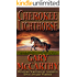Cherokee Lighthorse (The Horseman Series Book 2)