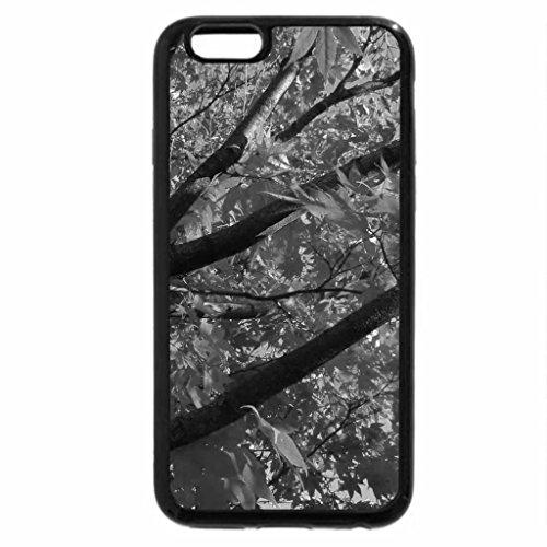 iPhone 6S Plus Case, iPhone 6 Plus Case (Black & White) - Indian Summer